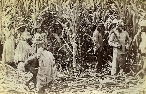 slavery in north america in 17th 18th and part of the 19th century From then until the end of the 19th century however, by the mid-17th century the european demand for captives millions of africans were transported to the caribbean, north and south america.
