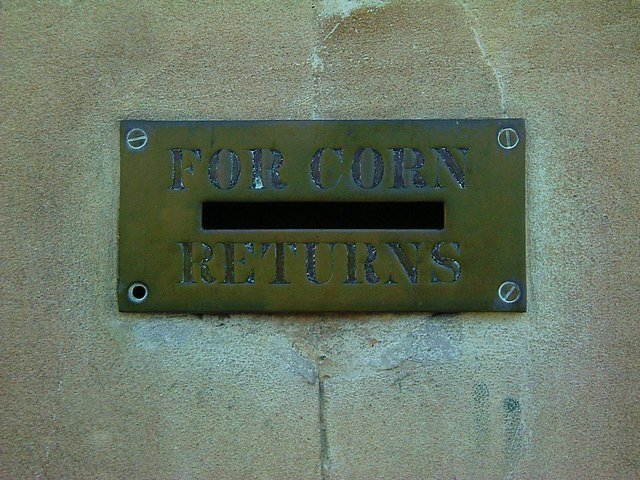 CornLaws-4