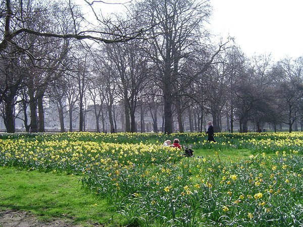 Green_Park_London_England