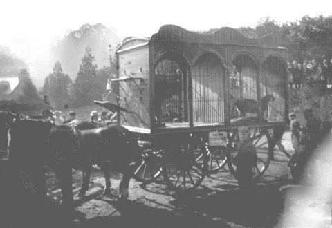 1856menagerie