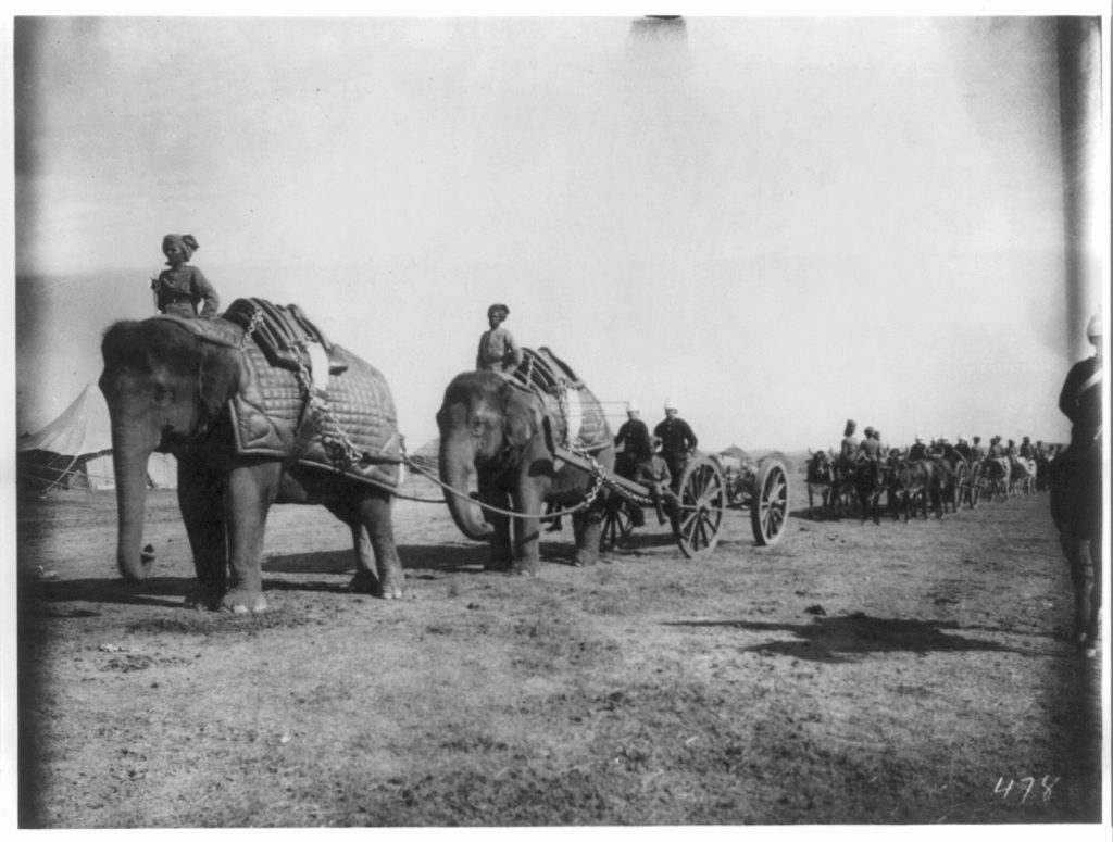 Elephant Battery of Heavy Artillery